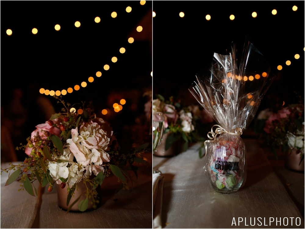 _APLUSLPHOTO_EMILY_TIM_WEDDING_0107.jpg