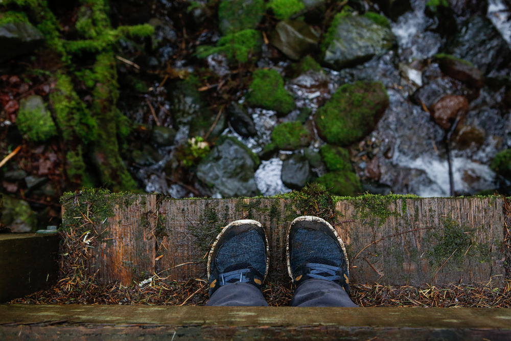 APLUSLPHOTO_PORTLAND_PHOTOGRAPHER-6.jpg