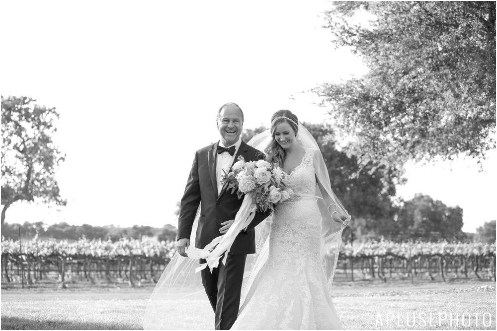 APLUSLPHOTO_PORTLAND_WEDDING_PHOTOGRAPHERS_0128.jpg