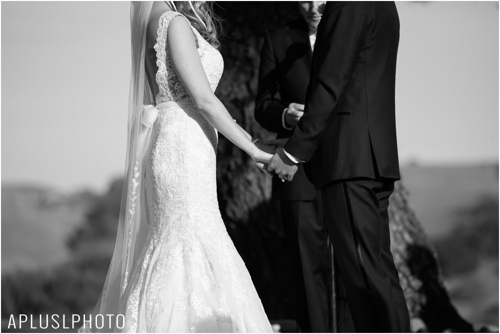 APLUSLPHOTO_PORTLAND_WEDDING_PHOTOGRAPHERS_0131.jpg