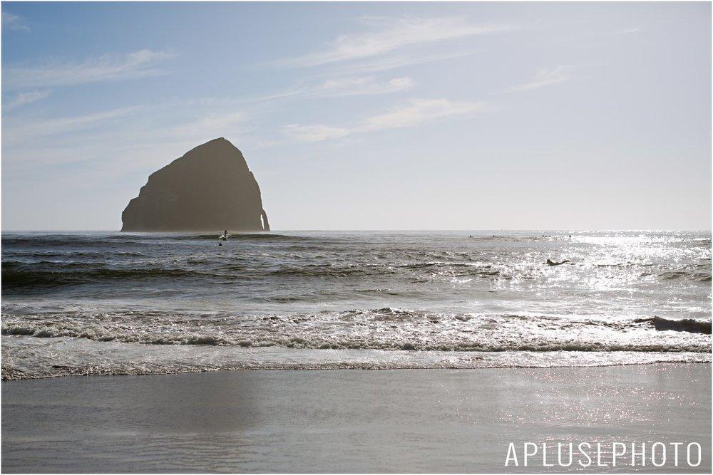 APlusLPhotoWedding_462.jpg