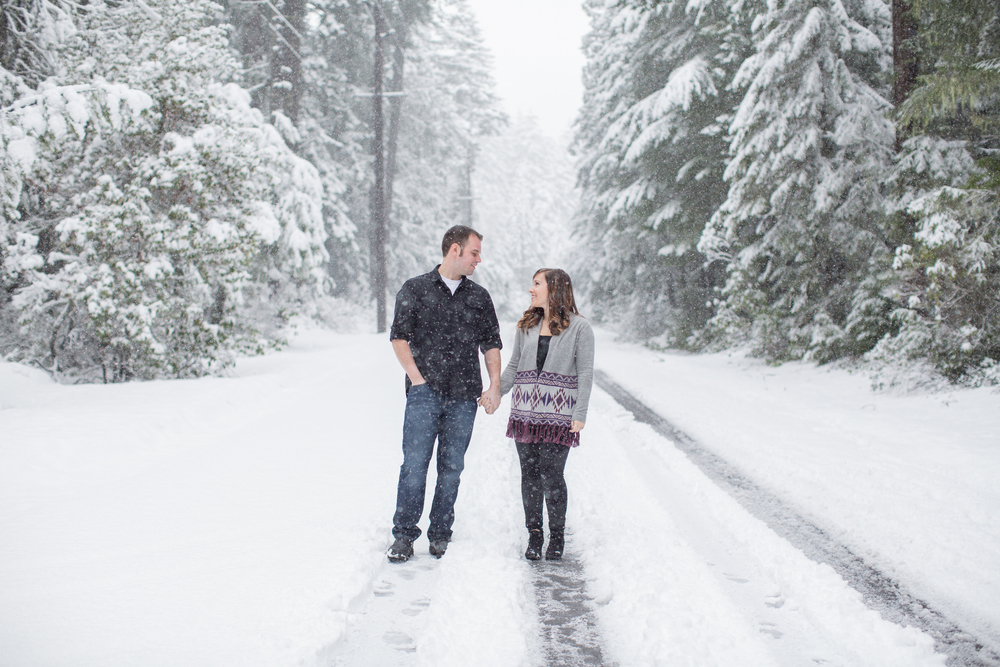 Engagement Session in the Snow : A Plus L Photo