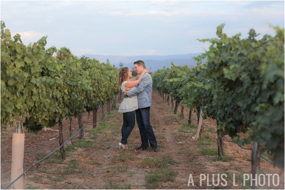 Temecula Winery Engagement Session In Southern California | A Plus L Photo