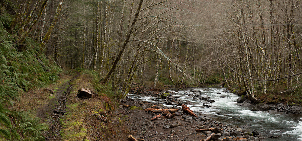 Adventure | Wilson River Trail | A Plus L Photo