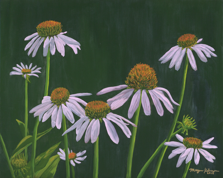 Cone Flowers (cover).jpg