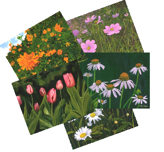 Floral variety package includes these 5 designs (a total of 10 note cards are in the package, 2 of each design).
