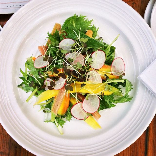 Mizuna salad & micro mizuna