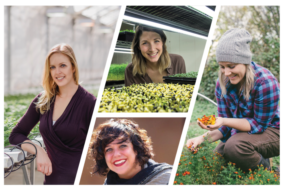 Meet 4 female trailblazers raising the bar in controlled environment agriculture through entrepreneurship.