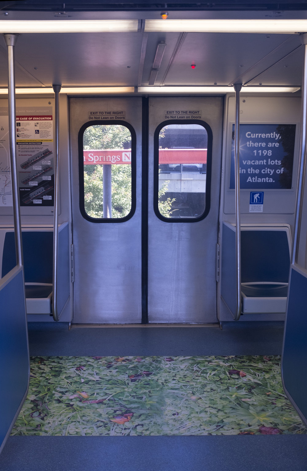 The floor of the train car featured a larger-than-life photograph of the grass, weeds and garbage in one of the city's many vacant lots.