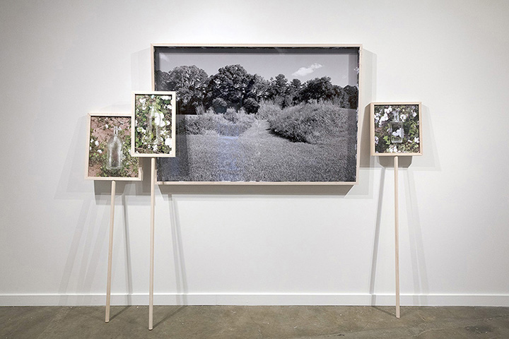 The Way She Put on Her Shoes, 2017, Archival pigment prints in custom standing maple frames, Installation dimensions variable
