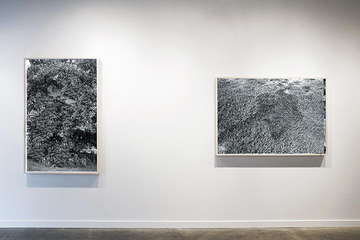 2017 Installation at Sandler Hudson Gallery in Atlanta, GA.