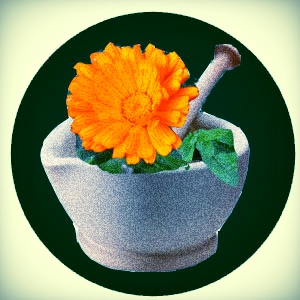 mortar pestle calendula in green  circle.jpg