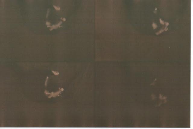 Scan+6.jpeg