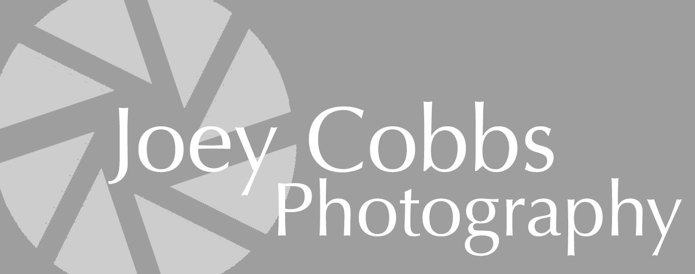 Joey Cobbs Wedding & Event Photography