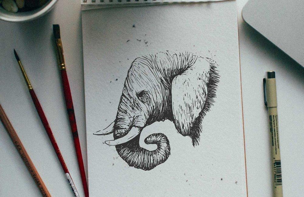 E-Elephant.jpg