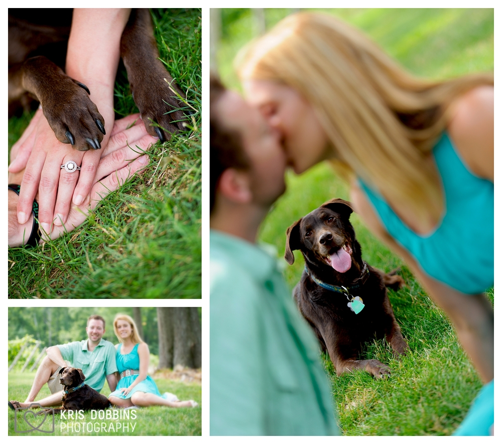 kdp_copyrighted_engagement_image_km_blog_0006.jpg