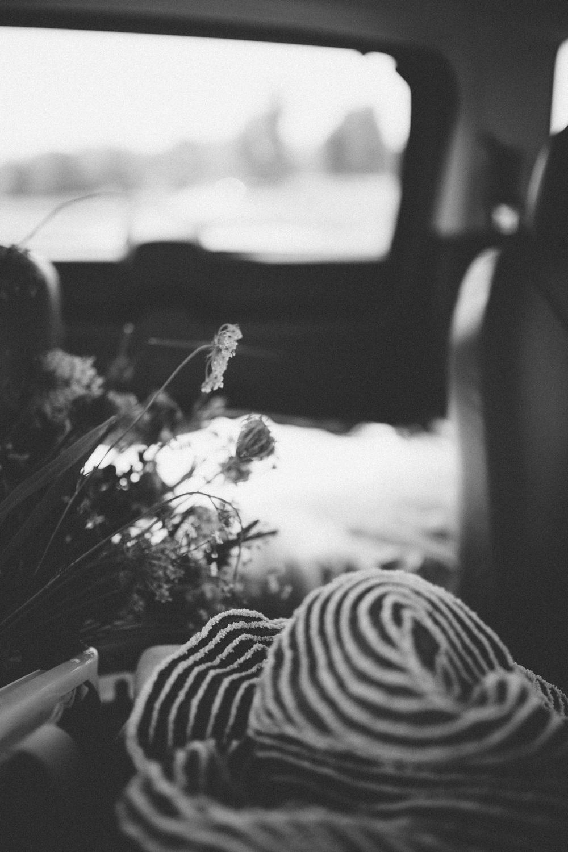 roadside-flowers-0172.jpg