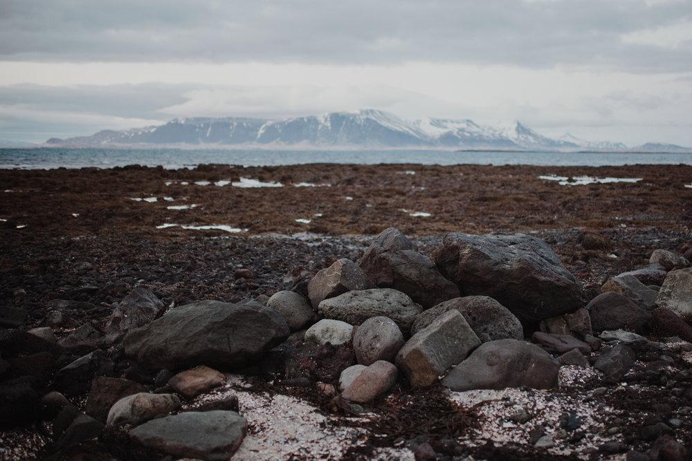 iceland-8738.jpg