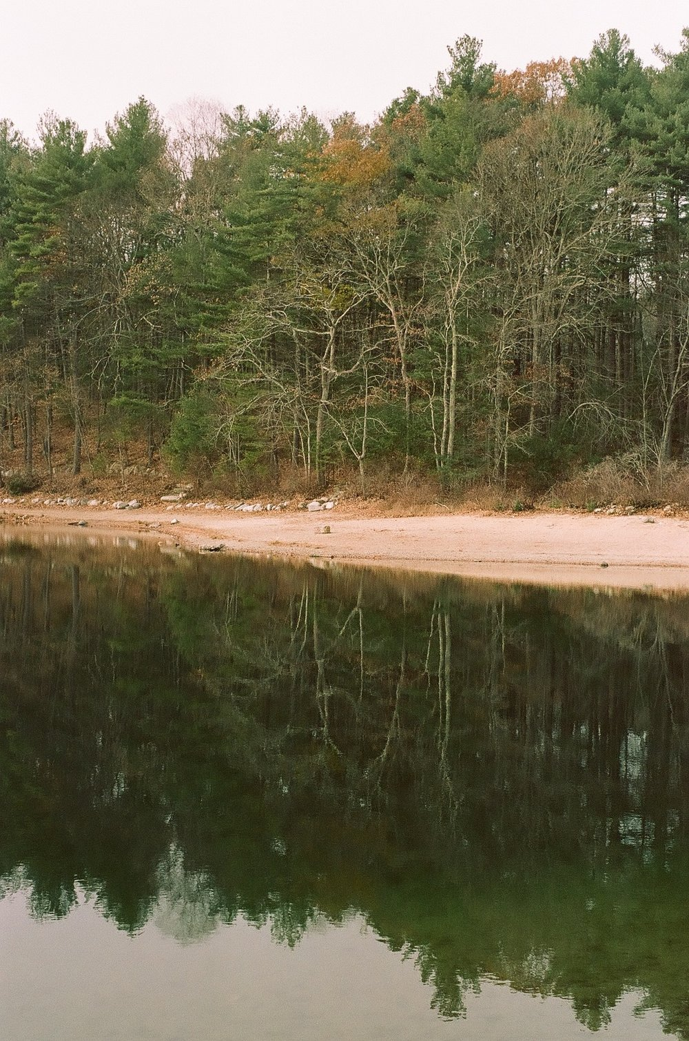 Walden Pond shot in Kodak Gold 35mm film Winter 2017