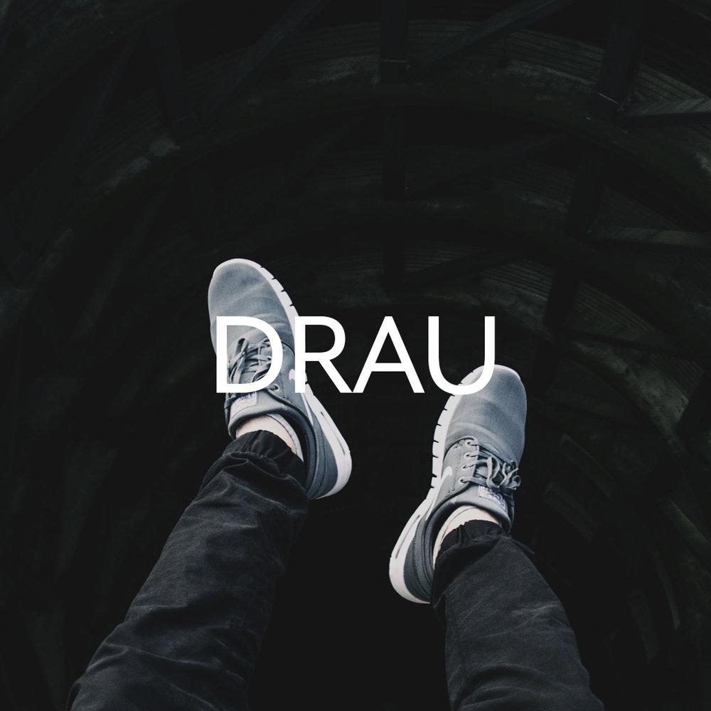 draulink