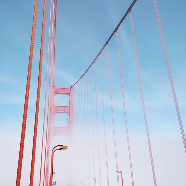 Almost 7 years living here and this bridge never gets old. Charles Ellis was the architectural mastermind and unsung hero of most of the details that make this bridge so aesthetically pleasing. #goldengatebridge #sf #bikesf #cityguides