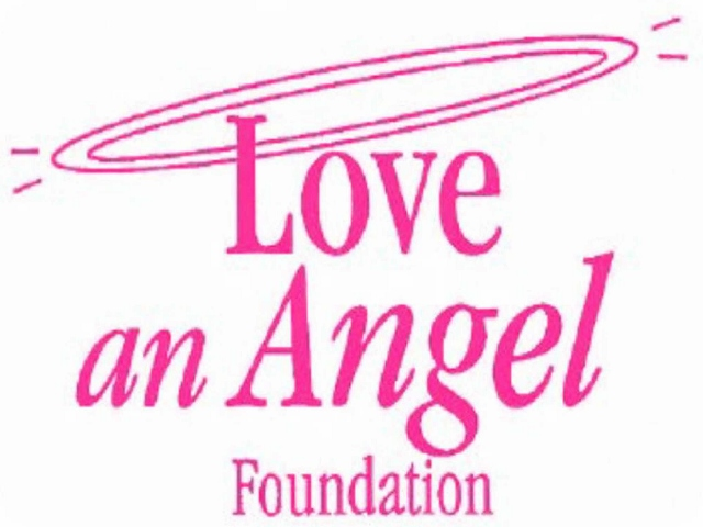 "The Love an Angel Foundation (LAAF) is a 501(c)3 nonprofit organization working to meet the needs of individuals and families of Ohio affected by Angelman Syndrome (AS).  AS is a rare neuro-genetic disorder characterized by severe intellectual and developmental disabilities. Those with AS, known as ""Angels"", require lifelong care.   LAAF owns 20 acres of land in Summit County, Ohio. It is the future site of Halo Farm Complex; a recreation, residential and respite care facility, for those with AS and similar disabilities."