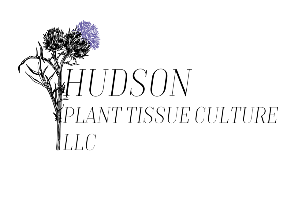 HPTC_Logo_Artichoke_BlueViolet.png