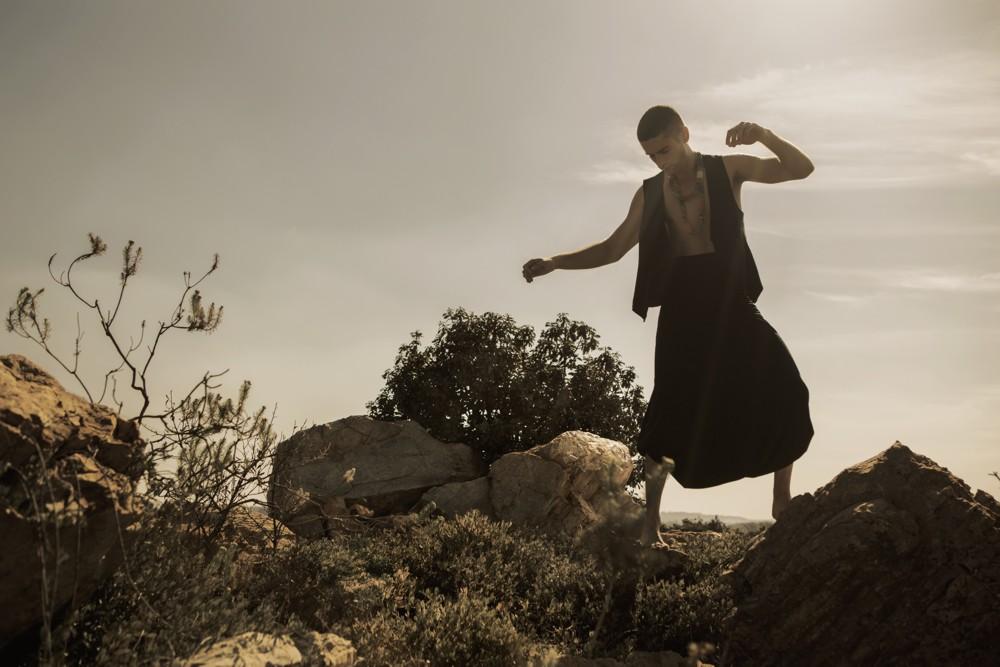 Aimmea - Pieter Black Lionwolf IV.jpg