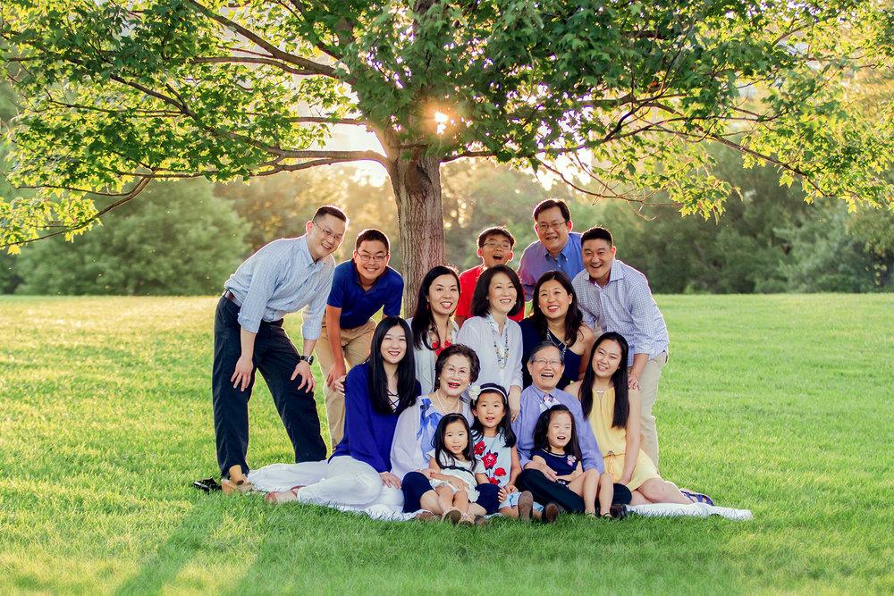 Family tree, Arlington VA, Arlington VA photographer, big family portrait, three generations