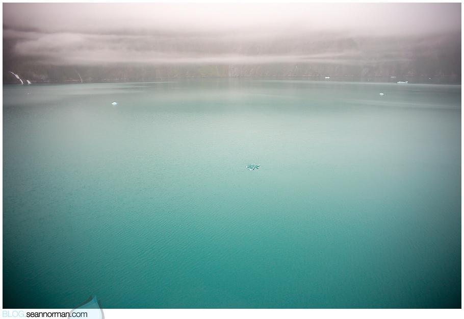 Alaska-TreadingWater-9907