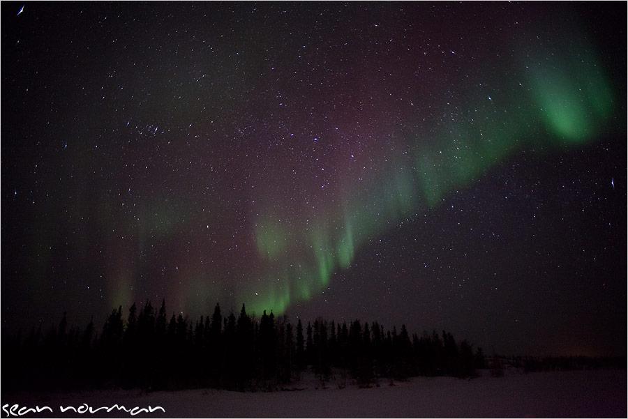 canadian aurora