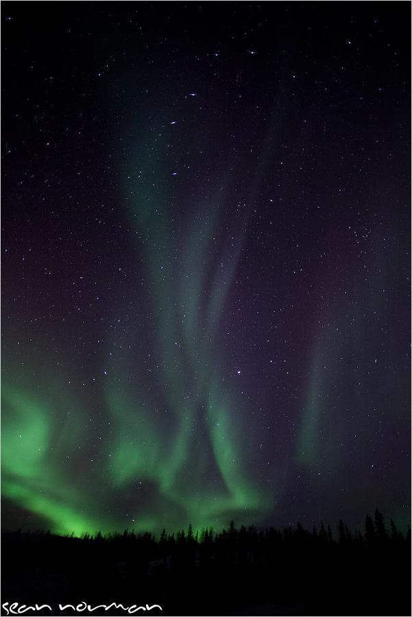 aurora tours