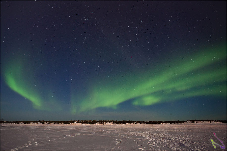 northern lights tours yellowknife northwest territories