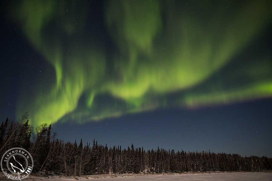 Northern-Lights-Dance-Above-Yellowknife-Spectacular-NWT-14.jpg