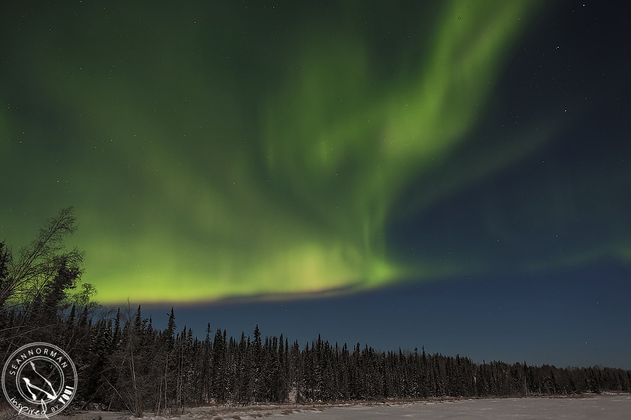 Northern-Lights-Dance-Above-Yellowknife-Spectacular-NWT-16.jpg