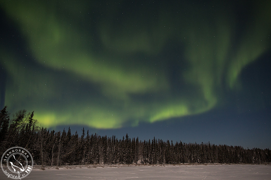 Northern-Lights-Dance-Above-Yellowknife-Spectacular-NWT-17.jpg