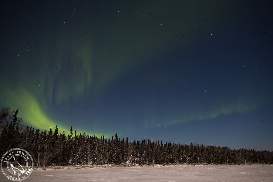 Northern-Lights-Dance-Above-Yellowknife-Spectacular-NWT-21.jpg