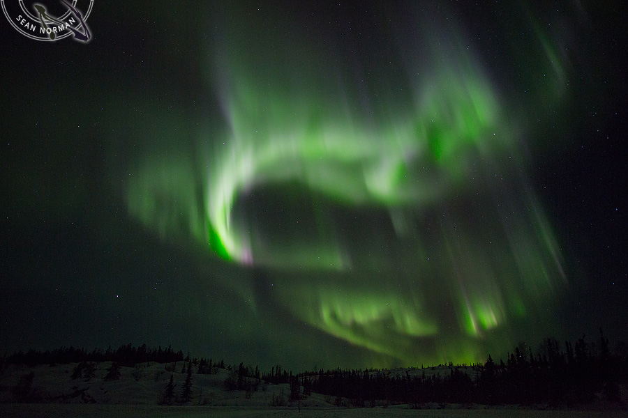 Aurora Borealis above Yellowknife - The Best Show on Earth - 15