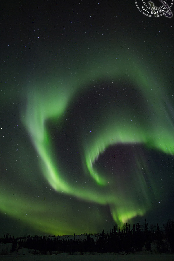 Aurora Borealis above Yellowknife - The Best Show on Earth - 17