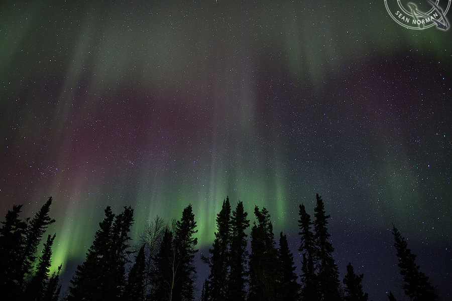 northern lights photography canada