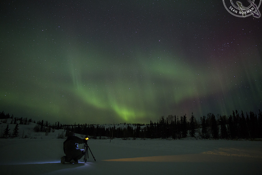 Aurora Borealis above Yellowknife - The Best Show on Earth - 21