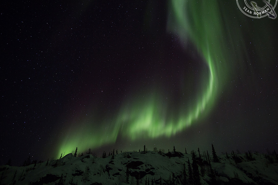 Aurora Borealis above Yellowknife - The Best Show on Earth - 3
