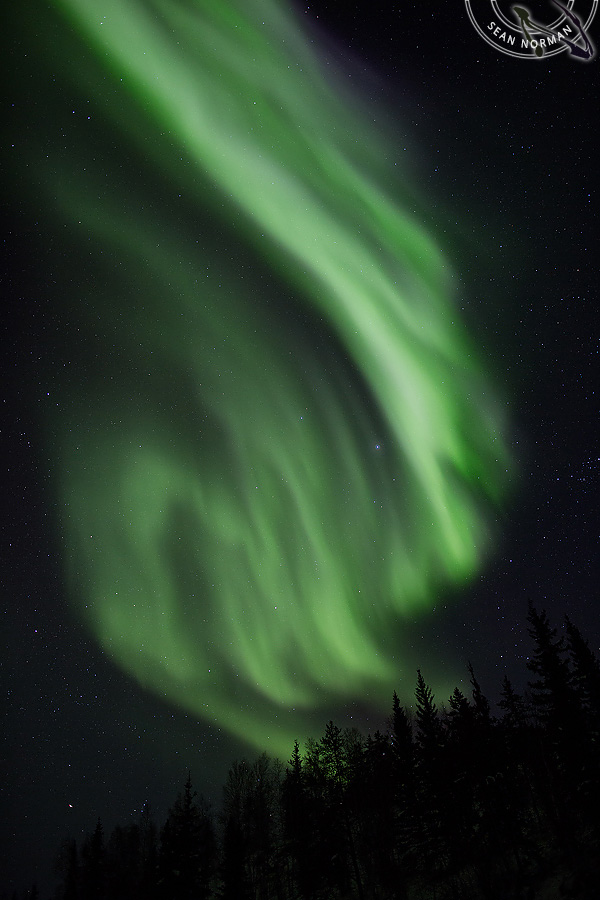 Aurora Borealis above Yellowknife - The Best Show on Earth - 4