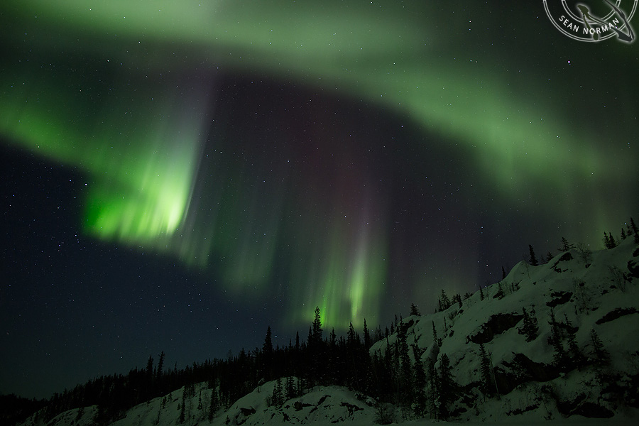 Aurora Borealis above Yellowknife - The Best Show on Earth - 6