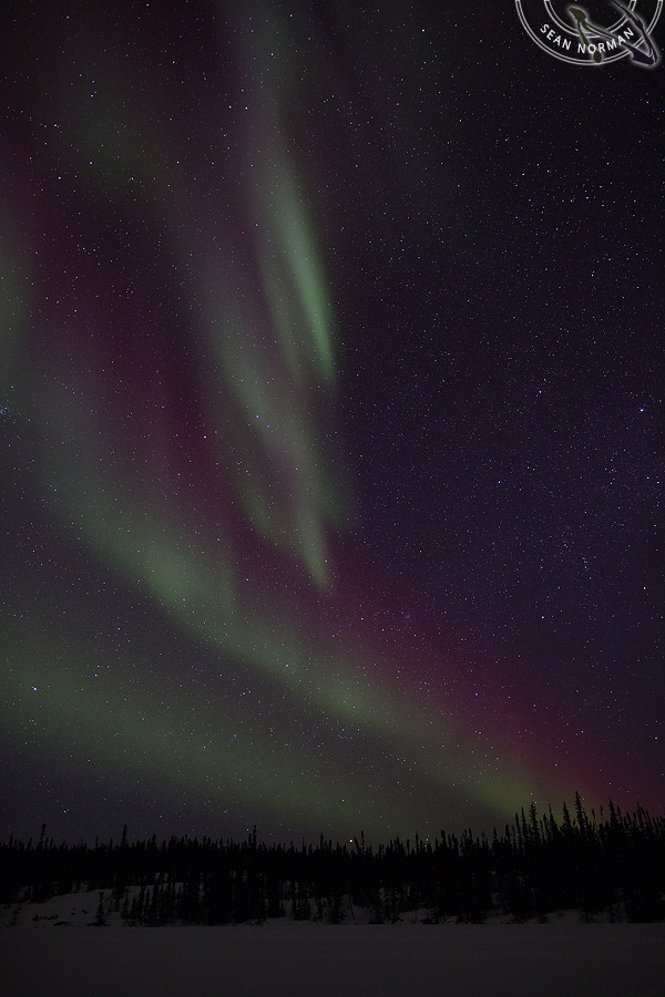 Aurora Borealis above Yellowknife - The Best Show on Earth - 9