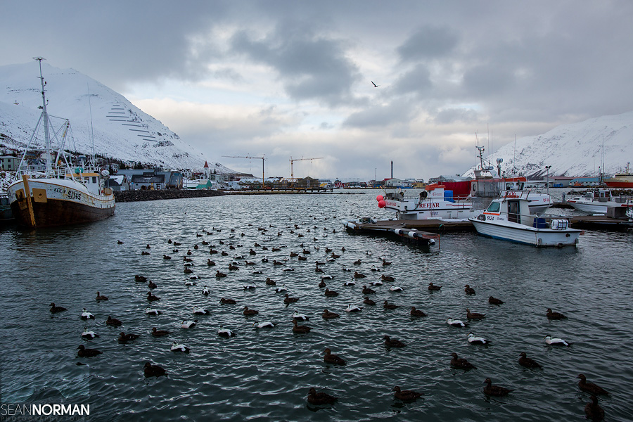 North-Iceland-Officially-the-Land-of-Fire-and-Ice-1.jpg