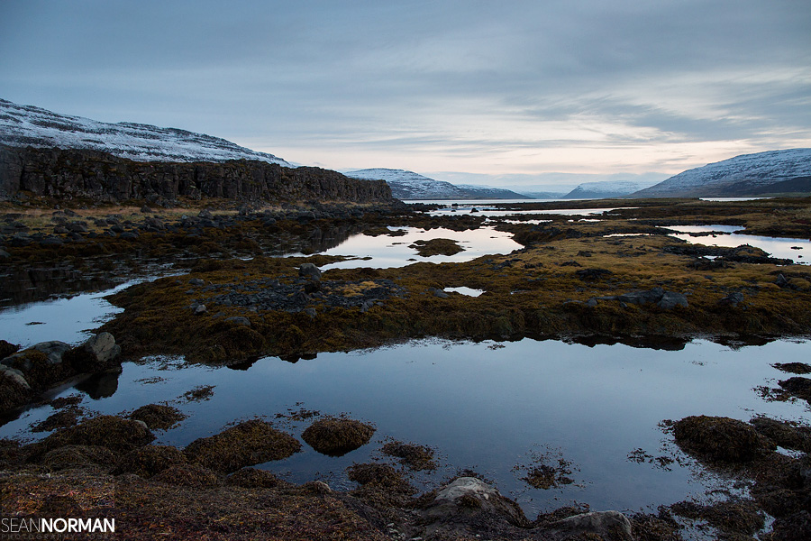 West-Fjords-in-Iceland-11.jpg