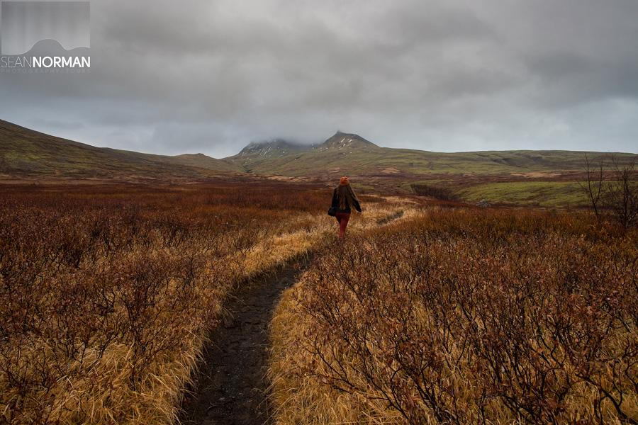 skaftafell national park hike