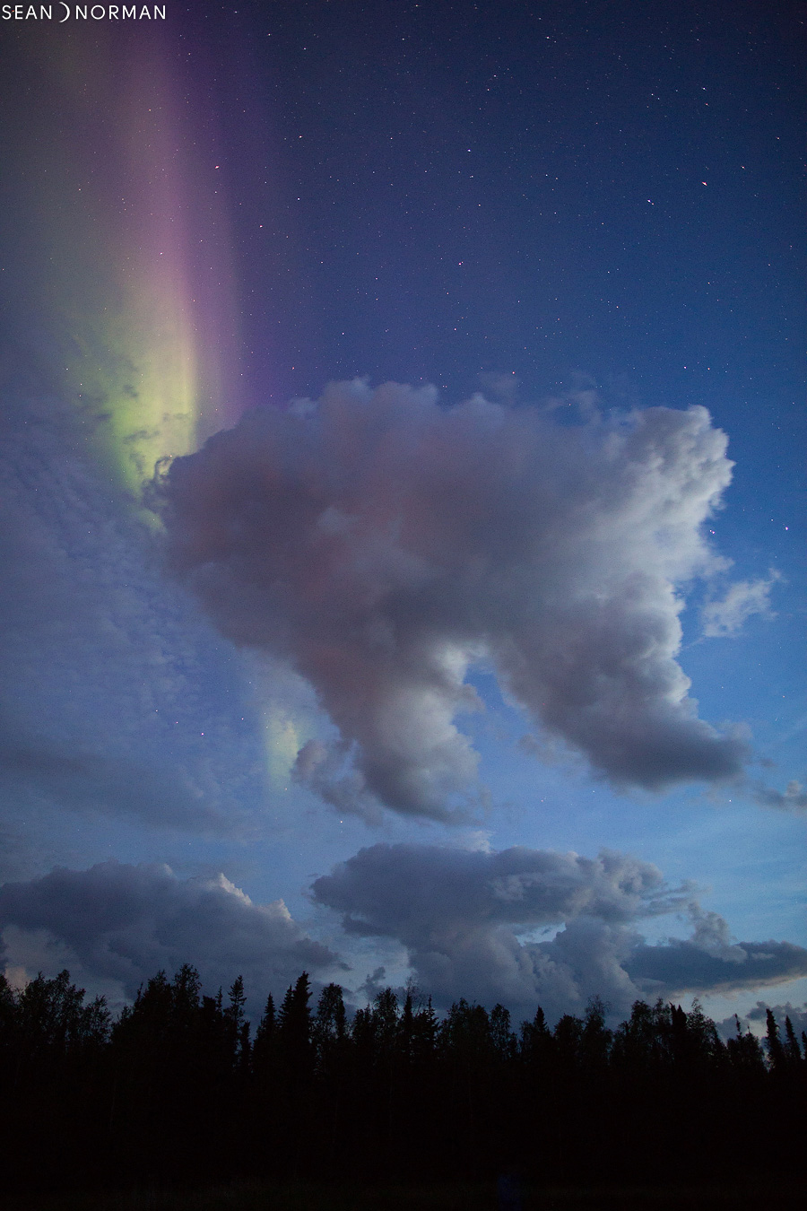 Yellowknife Northern Lights in August - Sean's Guesthouse & Aurora Tours - 6.jpg
