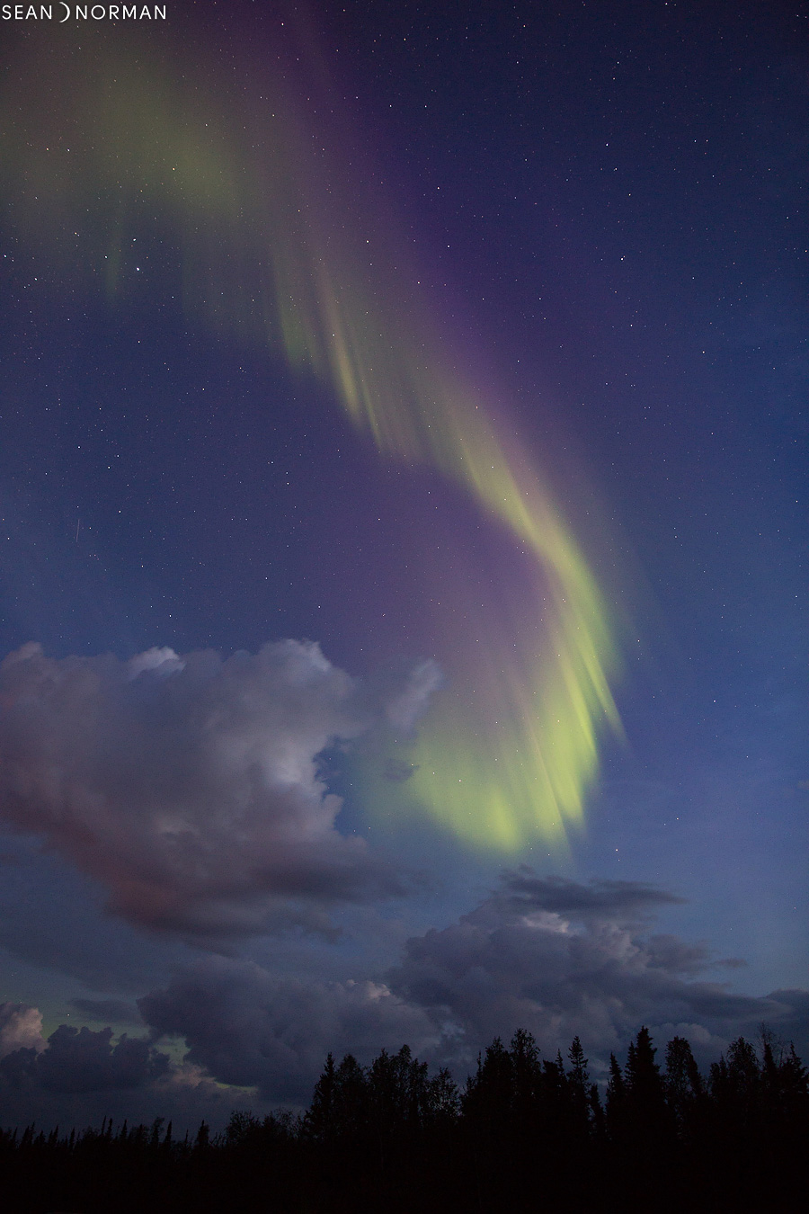 Yellowknife Northern Lights in August - Sean's Guesthouse & Aurora Tours - 5.jpg